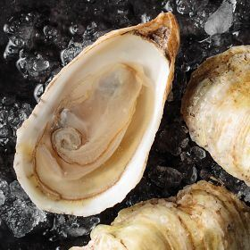 1 pkg. Fresh Caraquet Oysters