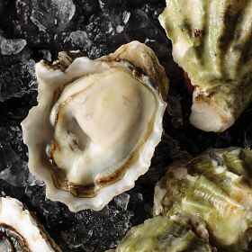 1 pkg. Fresh Kumamoto Oysters